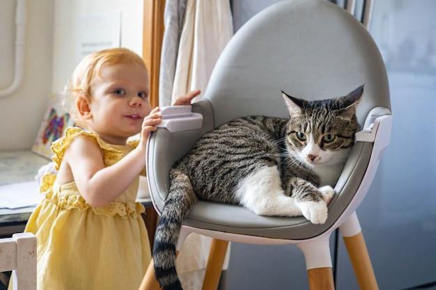 Bambina rossa allegra e divertente con un vestito giallo elegante che posa con un gatto che si rilassa sulla poltrona