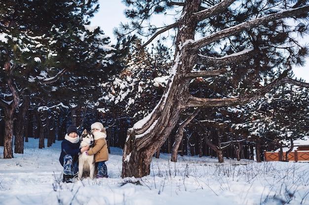 Ragazzino e ragazza allegri sono in piedi con il loro grosso cane nella foresta
