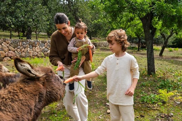 Madre allegra e bambini che danno da mangiare a simpatici asini