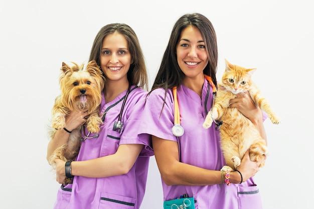 Veterinario allegro delle donne che tengono i suoi animali domestici. concetto veterinario.