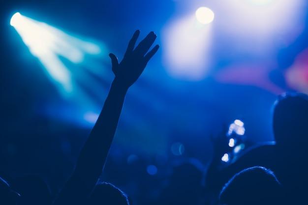 Folla felice esultante al concerto che si gode l'esibizione musicale