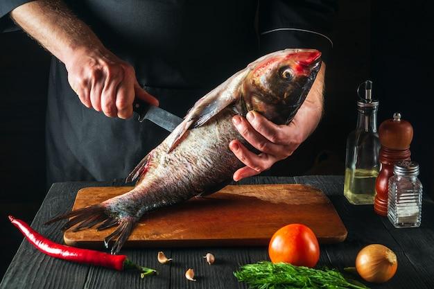 Lo chef o il cuoco sta pulendo un pesce carpa dalla testa grossa. ambiente di lavoro nella cucina del ristorante. concetto di dieta del pesce