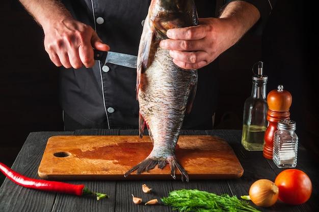 Lo chef sta pulendo un pesce carpa dalla testa grossa. ambiente di lavoro nella cucina del ristorante. concetto di dieta del pesce