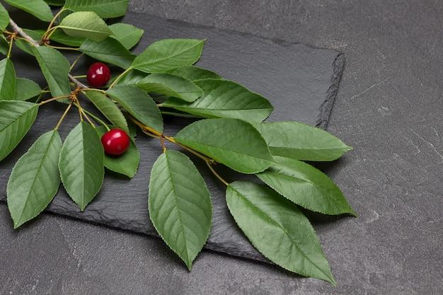 Ramo di ciliegio con frutti di bosco. sfondo nero. vista dall'alto.