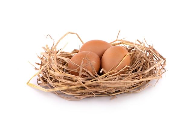 Uovo di gallina isolato su sfondo bianco