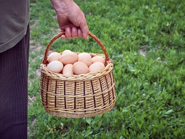 Uova di gallina in un cestino.