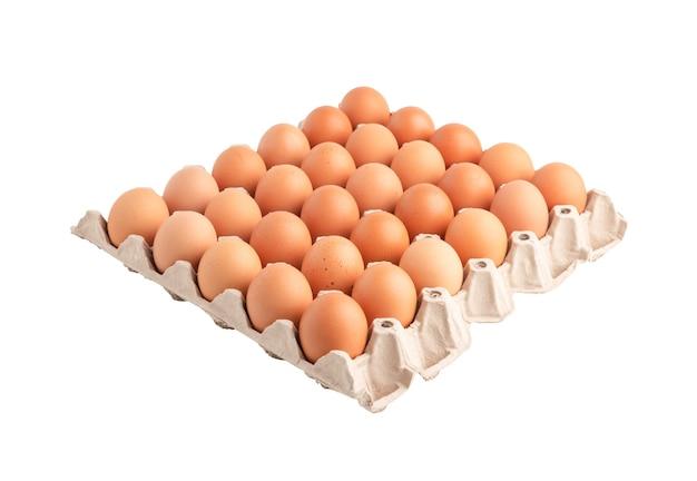 Uova di gallina nella carta cartone isolato sulla superficie bianca con tracciati di ritaglio