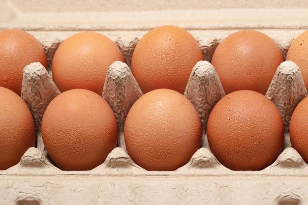 Uova di gallina in un cartone di uova aperto isolato su bianco. sfondo di uova di gallina fresche. uova in scatola