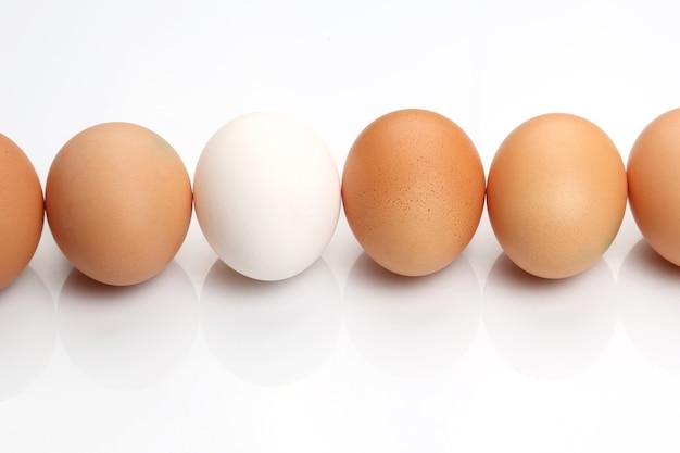 Uova di gallina su sfondo bianco