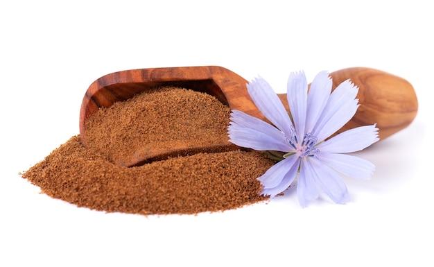 Cicoria in polvere e fiore in paletta di legno isolato su sfondo bianco cichorium intybus