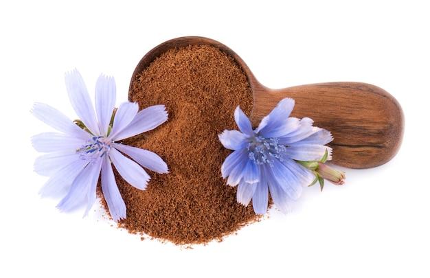 Cicoria in polvere e fiore in cucchiaio di legno isolato su sfondo bianco cichorium intybus