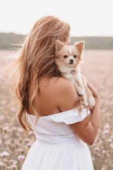 Cane chihuahua nelle mani di una ragazza in un campo in estate nella natura