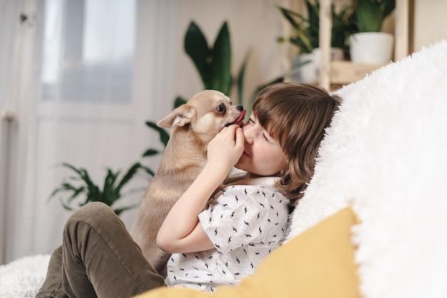 Il cane della chihuahua lecca il fronte del bambino che ride sul divano con una coperta. ritratto di un felice