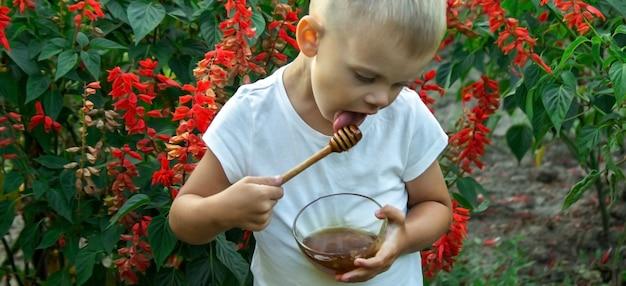 Il bambino mangia il miele in giardino.