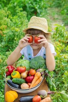 Bambino in giardino con verdure nelle sue mani. messa a fuoco selettiva.
