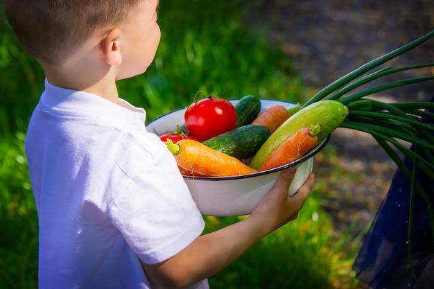 Bambino in giardino con le verdure in mano