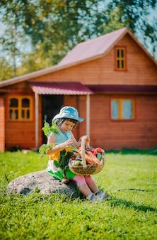 Ragazza bambino 3 anni seduto su una pietra contro una casa di legno con un grande cesto pieno di verdure coltivate nel suo giardino ecologico.