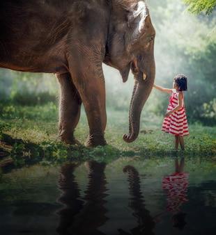 Ragazza bambino ed elefante