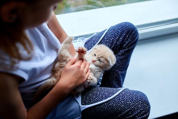 La bambina gioca con un gattino giocoso a casa vicino alla finestra.