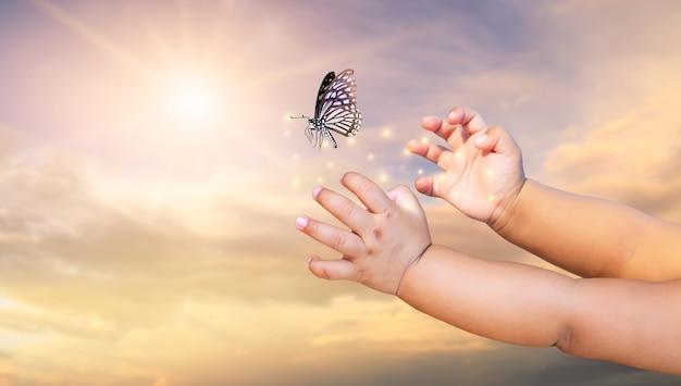 Le mani del bambino liberano la farfalla sullo sfondo splendente del tramonto