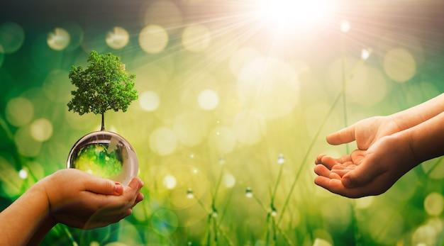 Mani del bambino che tengono il globo di terra di cristallo e lo striscione della giornata della terra dell'albero in crescita