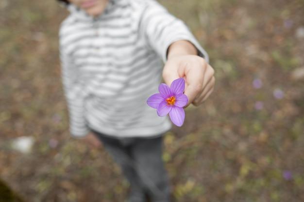 Il bambino porge un fiore viola