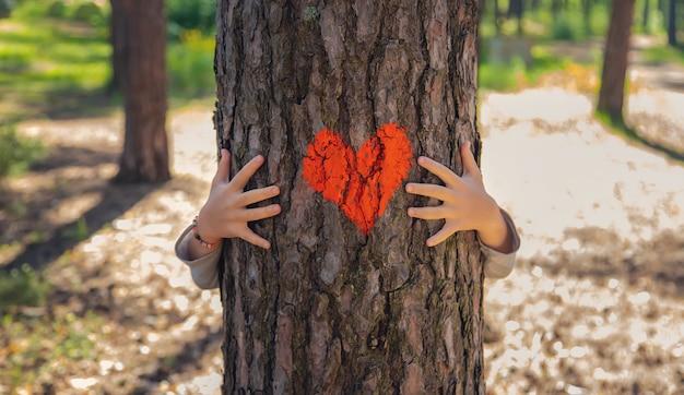 Un bambino abbraccia un albero