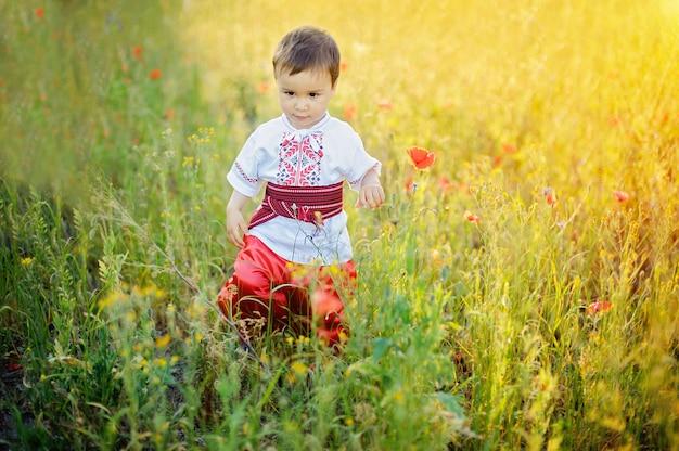 Kozak bambino in campo. festa dell'indipendenza dell'ucraina. la giornata della bandiera. giorno della costituzione. ragazzo in ricamo tradizionale in campo