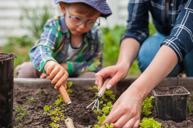 Bambino e madre giardinaggio nell'orto in cortile