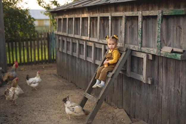 Un bambino in tuta si siede in alto sulle scale e dà da mangiare ai polli di mais. la ragazza divertente della fattoria si prende cura degli animali. gallo con le galline nel villaggio.
