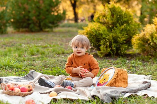 Bambino che raccoglie mele in una fattoria in autunno. piccolo neonato che gioca nel frutteto di mele. i bambini raccolgono la frutta in un cesto. bambino che mangia frutta al raccolto autunnale. divertimento all'aria aperta per i bambini. alimentazione sana