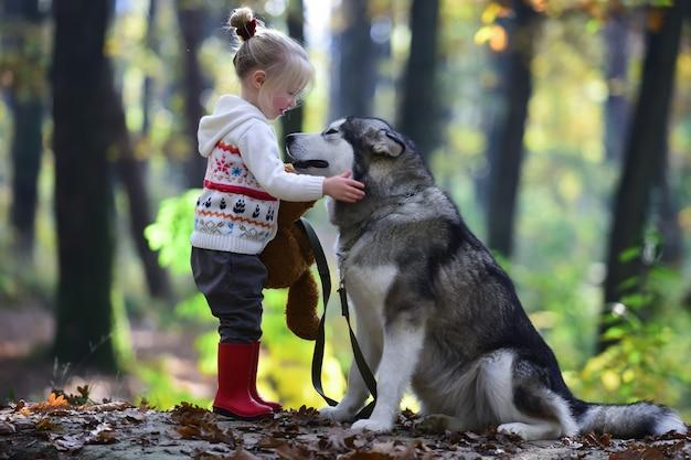 Il bambino gioca con il cane husky all'aperto. infanzia, gioco e divertimento. attività e riposo attivo. bambina con il cane nella foresta.