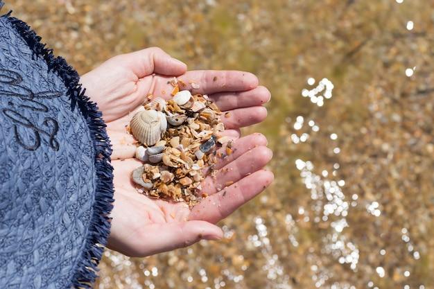 La mano del bambino che tiene le conchiglie isolate, conchiglie sullo sfondo, spiaggia