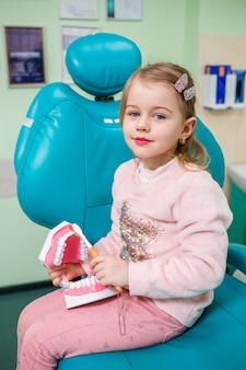 Il bambino si siede nell'ufficio del dentista e tiene in mano una mascella artificiale e si lava i denti