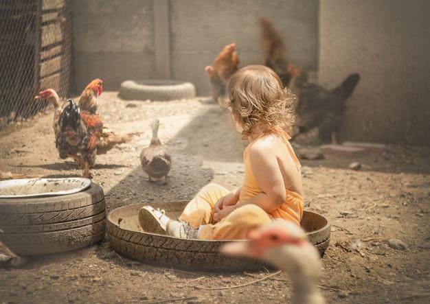 Bambino seduto per terra all'aperto tra i polli