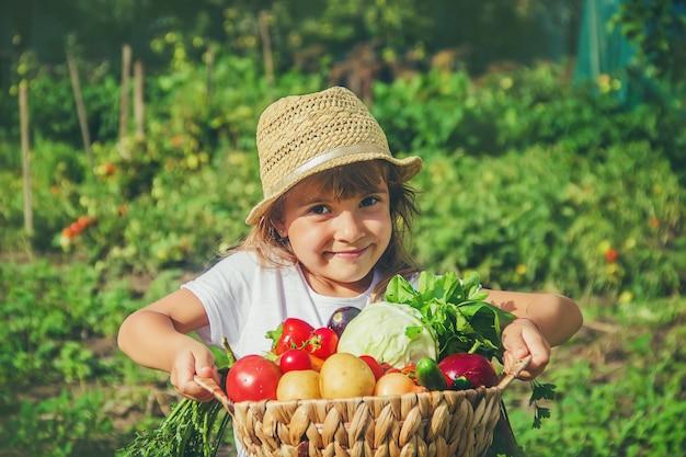 Un bambino nell'orto