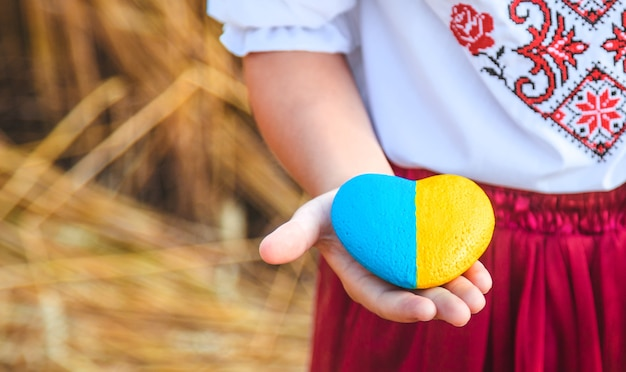 Bambino in un campo di grano. in vyshyvanka, il concetto del giorno dell'indipendenza dell'ucraina. messa a fuoco selettiva.