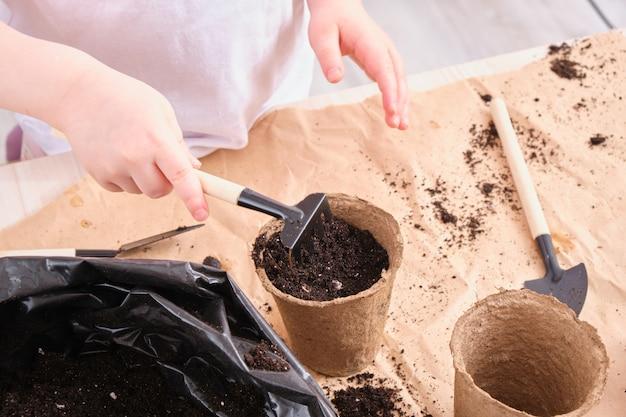 Un bambino con una maglietta bianca versa il terreno in un vaso di semi di torba, un bambino pianta un senen, attrezzi da giardino sul tavolo