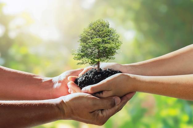 I bambini trasmettono l'albero al padre per piantarlo. concetto salva mondo