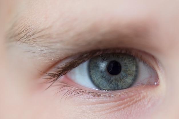 Colore grigio-azzurro degli occhi dei bambini. la tenerezza e la purezza dello sguardo del bambino