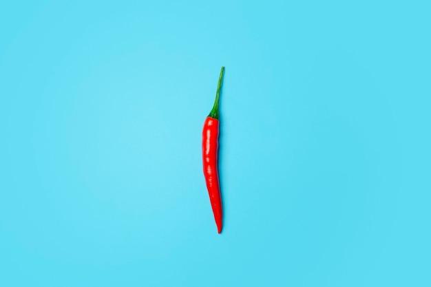 Peperoncini rossi su sfondo blu colorato. peperoncini piccanti come ingrediente della cucina asiatica e messicana e delle spezie