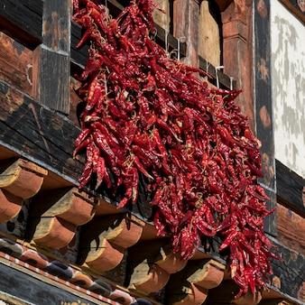 Chili peppers appeso su una finestra, paro, paro district, paro valley, bhutan