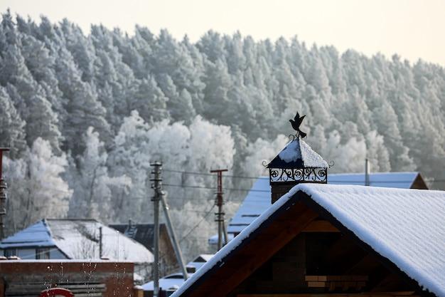 Il camino della casa è decorato con una bellissima banderuola metallica a forma di uccello