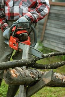 Tagliare la motosega in legno