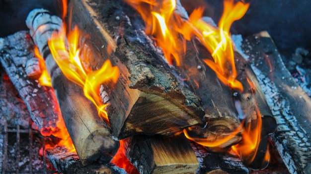 Legna da ardere tagliata che brucia calda nel forno
