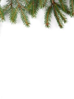 Composizione in natale dai rami di un albero di natale