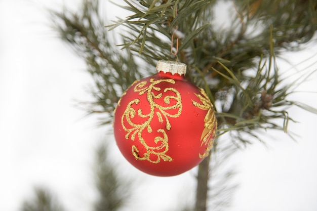 Decorazione natalizia: palla rossa, ramoscello di abete