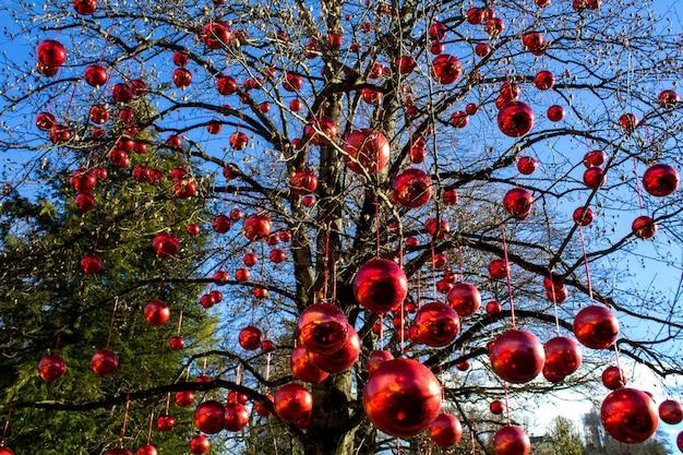 Decorazione natalizia con palline rosse sui rami degli alberi