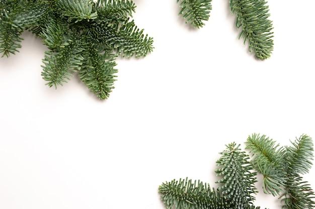 Rami di abete di natale con posto per il testo su uno sfondo bianco isolato. modello di carta di capodanno.