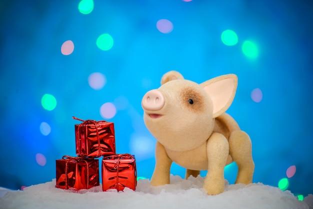 Immagine di natale con un maiale allegro carino e regali in un pacchetto festivo rosso nella neve, su uno sfondo blu con illuminazione e luci